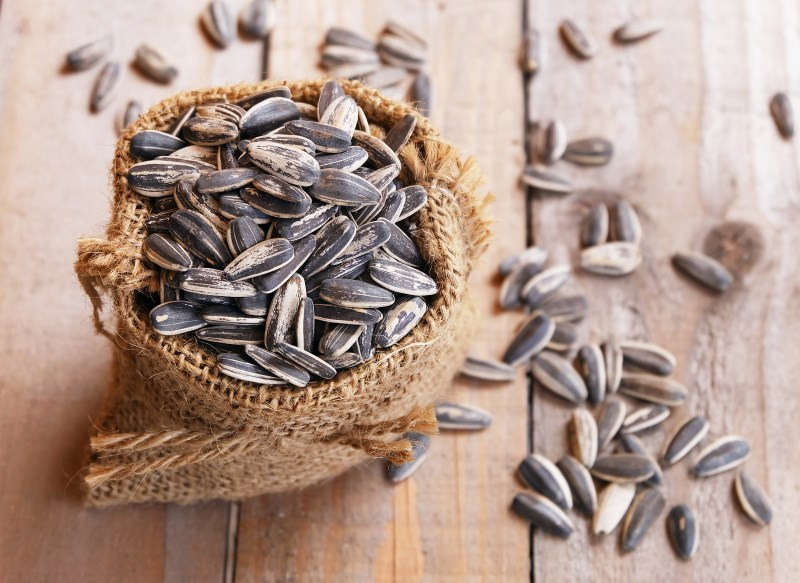 pile of sunflower seeds in the small sack on the wooden background